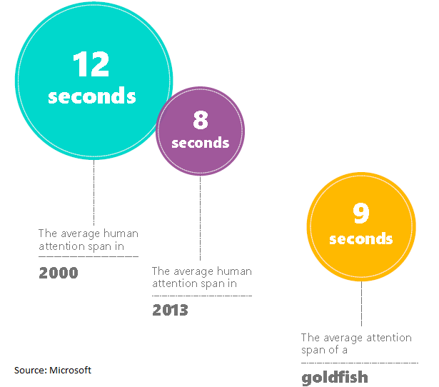 Attention span for quality blog posts
